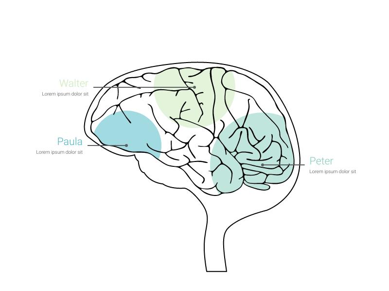Brain Chart Maker 100 Stunning Chart Types Vizzlo