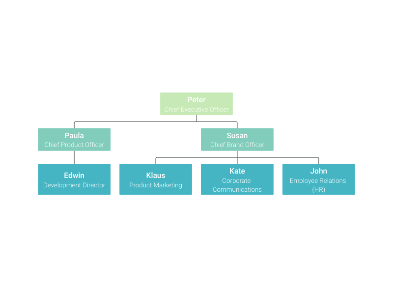 How To Make An Organizational Chart With Vizzlo